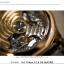 「新たな伝説を作るレンズ」シグマ 70mm F2.8 DG MACRO | Art レビューとサンプルイメージ(KASYAPA)